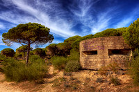 Barbate Pillbox